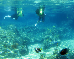 Rainbow Reef Snorkeling Pool at Disney Aulani Resort