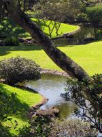 Manoa Stream Runs through the University of Hawaii Japanese Garden