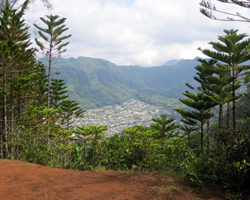 View of Manoa Valley from Waahila Ridge