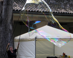 Honolulu Museum of Art Bubble Lady