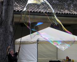 Honolulu Museum of Art Bubble Lady
