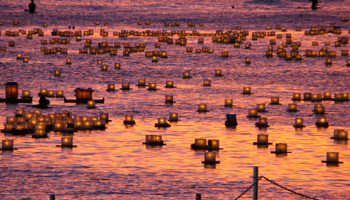Lantern Floating Hawaii Lanterns at Sunset