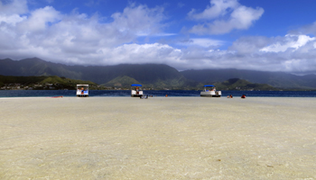 Just Inches of Water Covering the Kaneohe Bay Sandbar, East Shore Oahu
