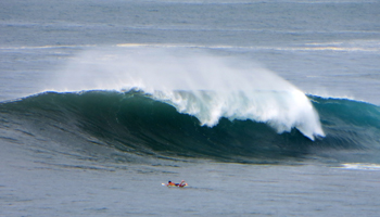 Surfing in Hawaii: Paddling out into Monster Surf at Waimea Bay