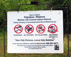 Some Areas Are Protected from Fishing in Hawaii