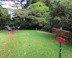 Signs Mark the Path to the Pond at Hoomaluhia for Fishing in Hawaii