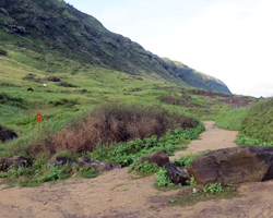 Kaena Point (North Shore Route) Trailhead