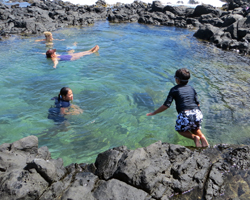 My Kids Swimming in Tide Pools Below Makapuu Lighthouse