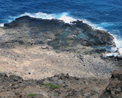Tide Pools Below Makapuu Lighthouse