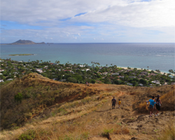 Lanikai Pillboxes Trail