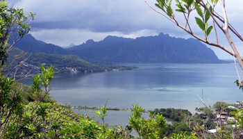 Kaneohe Bay and Kahaluu Fish Pond from Puu Maelieli Trail