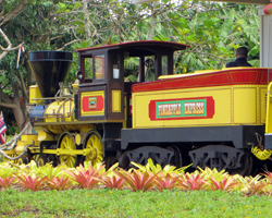 Pineapple Express Train at Dole Pineapple Plantation