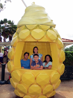 One of Many Pineapple-Themed Photo Backdrops at Dole Pineapple Plantation