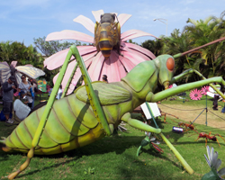 Giant Bugs Exhibit at Bishop Museum Healthy Kids Day