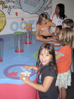 Interactive Exhibits at Bishop Museum Healthy Kids Day