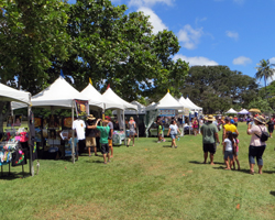Crafts and Vendors at Prince Lot Hula Festival