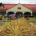 Hawaii History/Hawaii Culture Dole Pineapple Plantation