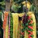 Hawaii History/Hawaii Culture Kamehameha Day