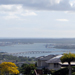 Scenic Hawaii Keaiwa Heiau State Park