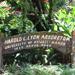 Scenic Hawaii Lyon Arboretum