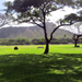Scenic Hawaii Parks
