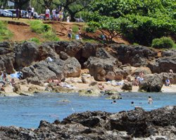The Not-a-Beach at Sharks Cove Hawaii