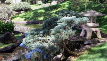 Japanese Garden on the University of Hawaii Manoa Campus