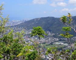 View of Honolulu from Waahila Ridge