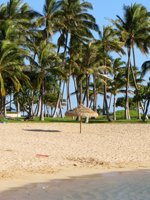 Hawaii Beaches Paradise
