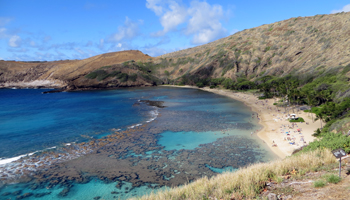 Popular Hawaii Beaches Hanauma Bay