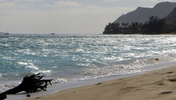 Choppy Water Conditions and Washed-Up Debris at Waimanalo Beach Park, East Shore Oahu