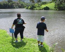 Fishing in Hawaii at Hoomaluhia Botanical Garden