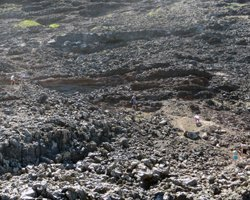 Tide Pool Trail at Makapuu Lighthouse