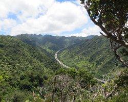 H3 Tunnel View Along Aiea Loop Trail