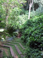 Near the Entrance at Friendship Garden