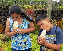 Kids Eating Dole Whips at Dole Pineapple Plantation