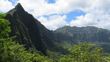 View of Koolau Mountains from Old Pali Road at Pali Lookout