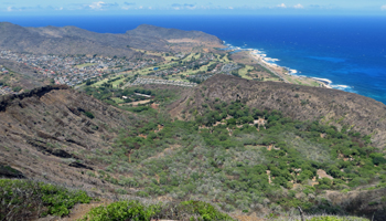 View of Koko Crater Botanical Garden from the Summit of Koko Crater Volcano