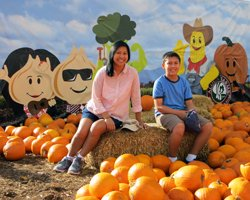 Aloun Farms Pumpkin Patch
