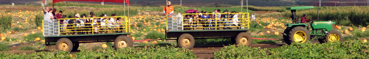 Hay Ride at Aloun Farms Pumpkin Patch